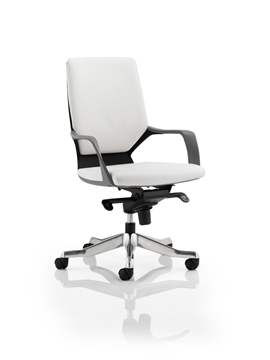 Picture of Office Chair Company Xenon Executive Black Chair White Leather Medium Back With Arms