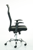 Picture of Office Chair Company Vegalite Executive Mesh Chair With Arms