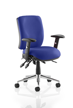 Picture of Office Chair Company Chiro Medium Back Bespoke Colour  Serene