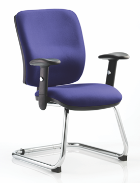 Picture of Office Chair Company Chiro Medium Cantilever Bespoke Colour Serene