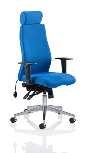 Picture of Office Chair Company Onyx Ergo Posture Chair Blue Fabric With Headrest With Arms