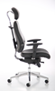 Picture of Office Chair Company Chiro Plus Ultimate Black With Arms With Headrest