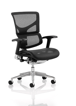 Picture of Office Chair Company Ergo-Dynamic Black Frame Black Mesh