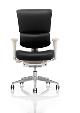 Picture of Office Chair Company Ergo-Dynamic Grey Frame Bonded Leather