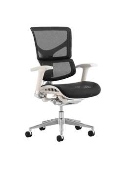 Picture of Office Chair Company Ergo-Dynamic Grey Frame Black Mesh