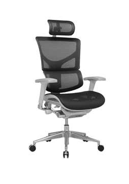Picture of Office Chair Company Ergo-Dynamic Posture Chair Black Mesh Grey Frame With Arms With Headrest