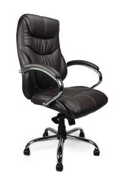 Picture for category Sandown Chair