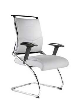 Picture for category Platinum Chair